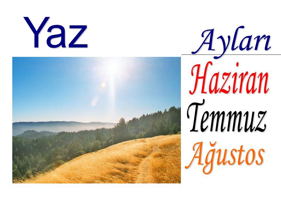 Havalar çok sıcak olur. Ekinler olgunlaşır, kurur ve sararır. Yaz mevsimi başlayınca okullar tatil olur.