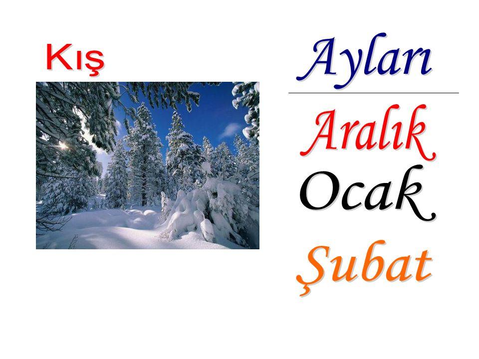 Kış en soğuk mevsimdir. Havalar çok soğuk olur, çoğu şehirde kar yağışlıdır.