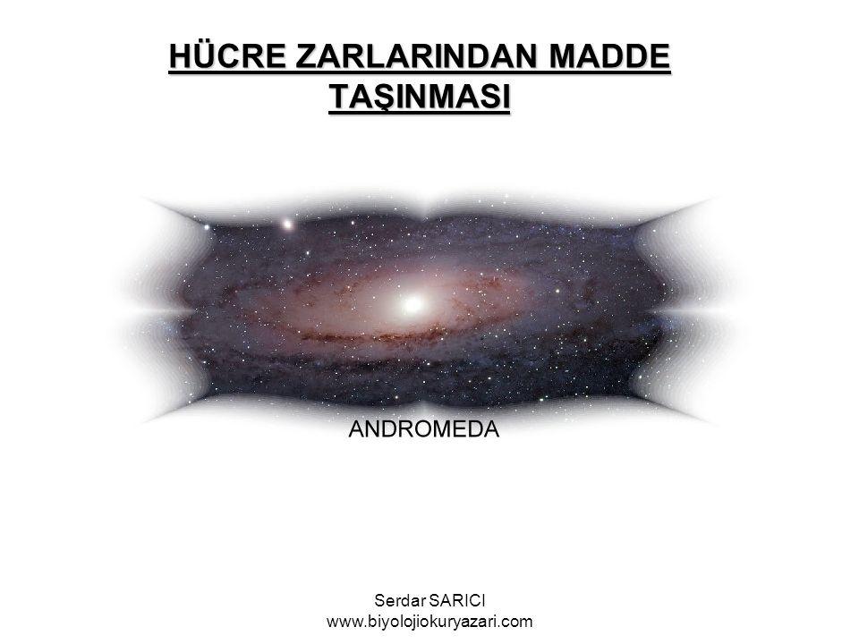 HÜCRE ZARLARINDAN MADDE TAŞINMASI Serdar SARICI www.biyolojiokuryazari.com