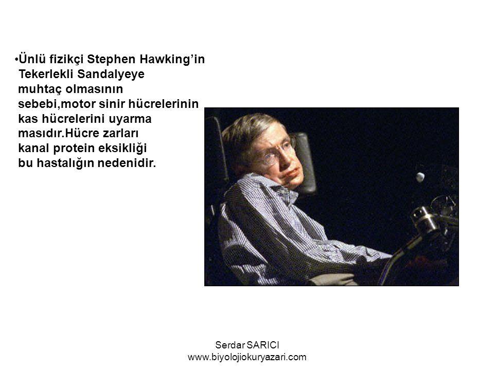 Ünlü fizikçi Stephen Hawking'in Tekerlekli Sandalyeye muhtaç olmasının sebebi,motor sinir hücrelerinin kas hücrelerini uyarma masıdır.Hücre zarları ka