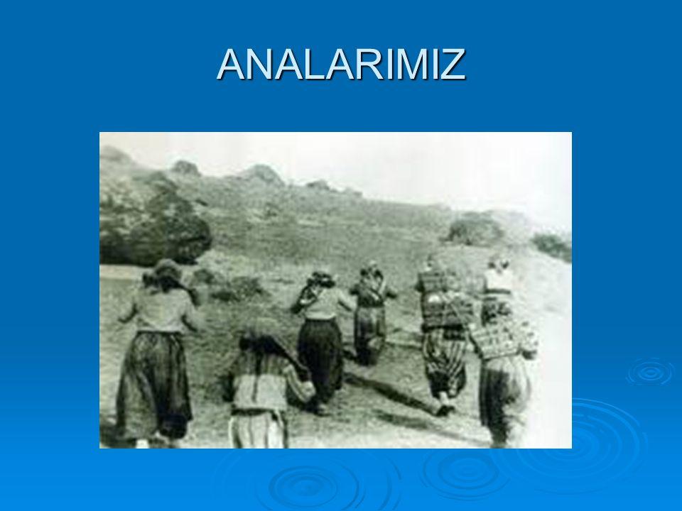 ANALARIMIZ