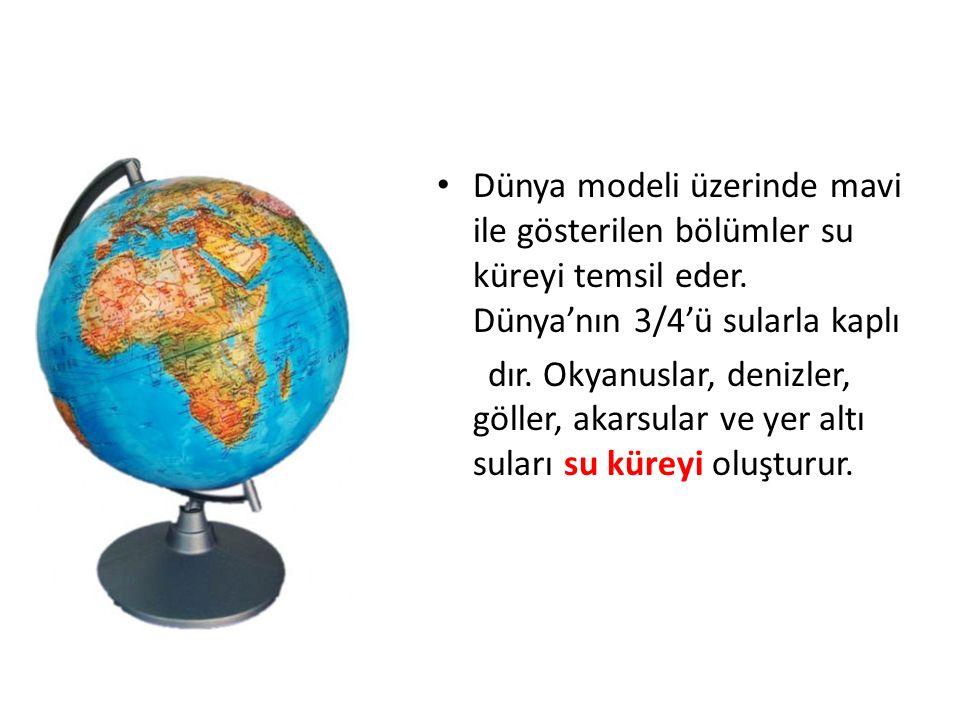 Dünya modeli üzerinde kahverengi, yeşil gibi renklerle gösterilen yerler karaları gösterir.