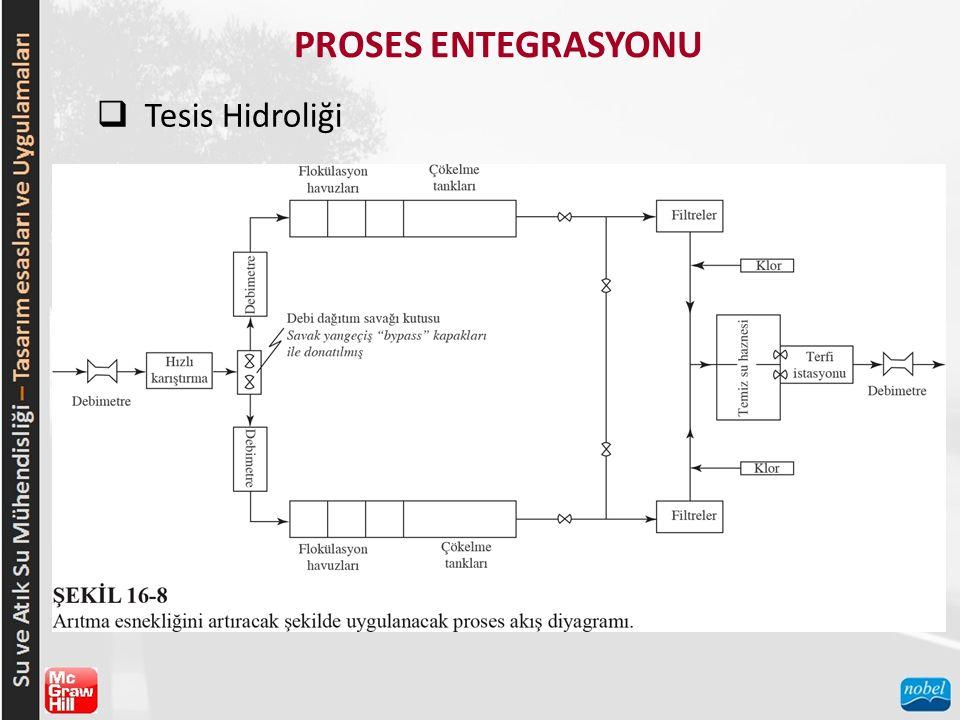 PROSES ENTEGRASYONU  Tesis Hidroliği