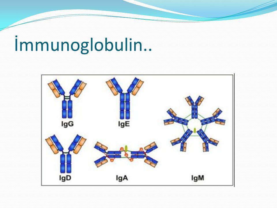 İntravenöz immunoglobulin 1981 FDA onayı ile ABD Standart intravenöz immunglobulin (IVIG) 5.000- 10.000 donör plazmasından Ticari bir IVIG preparatı %95 ve üzeri IgG, %2,5'ten az IgA ve IgM içerir.