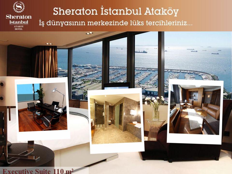 Executive Suite 110 m 2