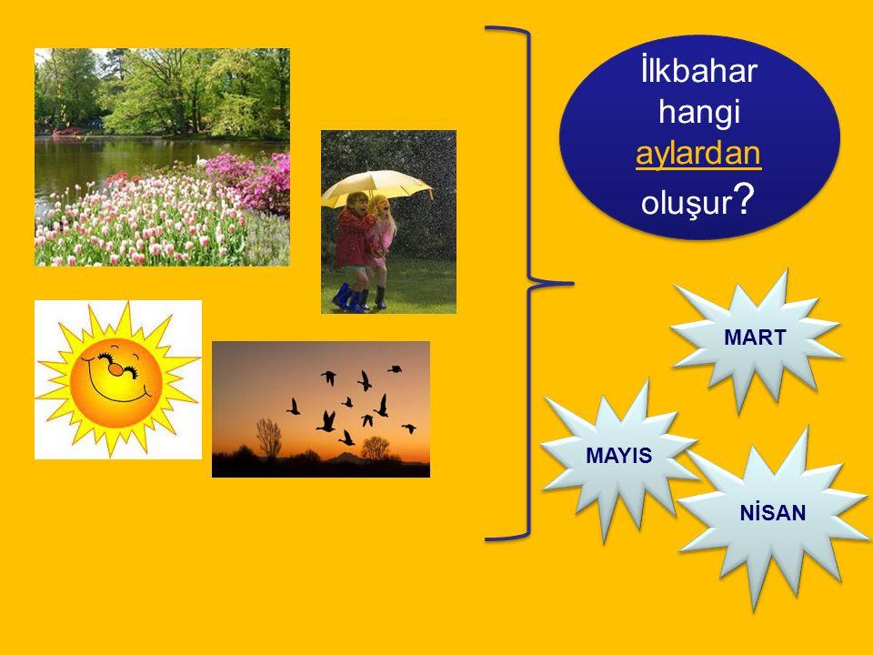 İlkbahar hangi aylardan oluşur ? MART NİSAN MAYIS