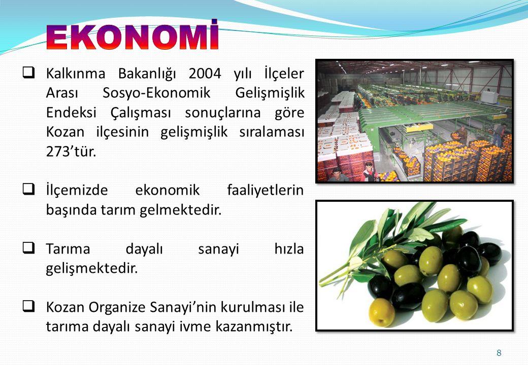 8  Kalkınma Bakanlığı 2004 yılı İlçeler Arası Sosyo-Ekonomik Gelişmişlik Endeksi Çalışması sonuçlarına göre Kozan ilçesinin gelişmişlik sıralaması 27