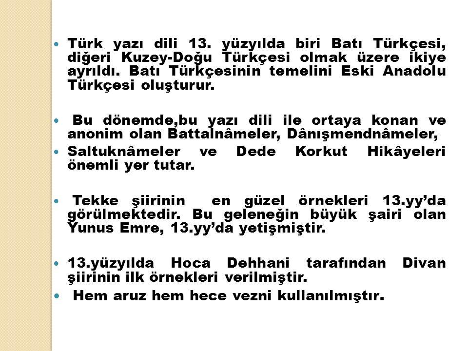 Türk yazı dili 13. yüzyılda biri Batı Türkçesi, diğeri Kuzey-Doğu Türkçesi olmak üzere ikiye ayrıldı. Batı Türkçesinin temelini Eski Anadolu Türkçesi