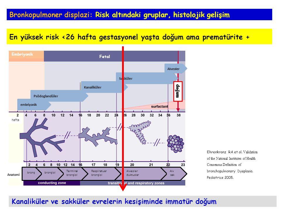 Bronkopulmoner displazi: Önleme Geary C et al.