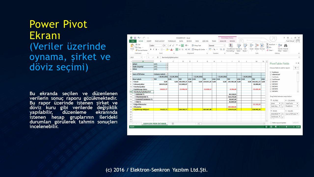 Power Pivot Ekranı (Veriler üzerinde oynama, şirket ve döviz seçimi) Bu ekranda seçilen ve düzenlenen verilerin sonuç raporu gözükmektedir. Bu rapor ü