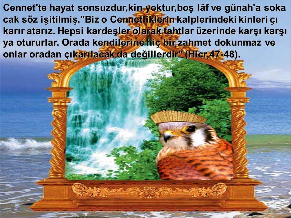 Cennet'te hayat sonsuzdur,kin yoktur,boş lâf ve günah'a soka cak söz işitilmiş.