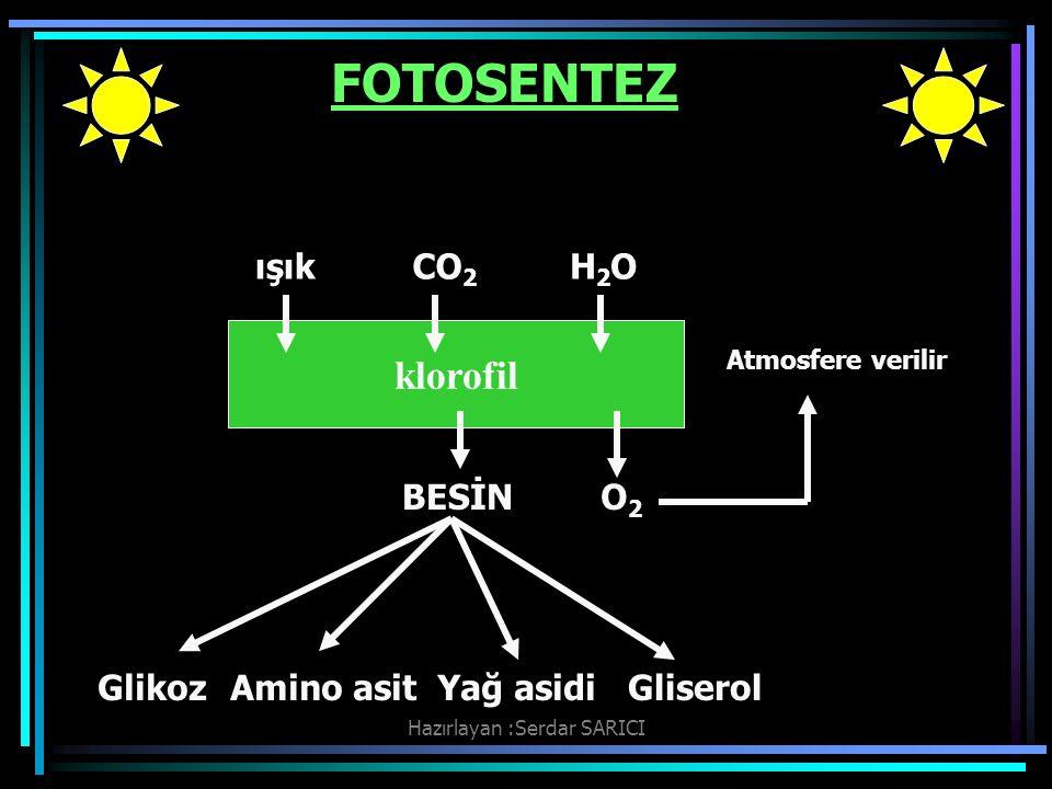 Hazırlayan :Serdar SARICI FOTOSENTEZ Fotosentez olayında co 2 kullanılarak besin maddesi sentezlenebilmesi için öncelikle ATP sentezinin yapılması gerekir.Bitki bu sentezi ışık kullanarak gerçekleştirir.