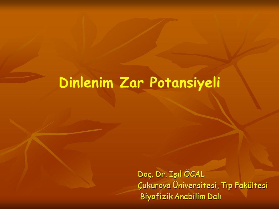 Dinlenim Zar Potansiyeli Doç. Dr. Işıl ÖCAL Çukurova Üniversitesi, Tıp Fakültesi Biyofizik Anabilim Dalı Biyofizik Anabilim Dalı