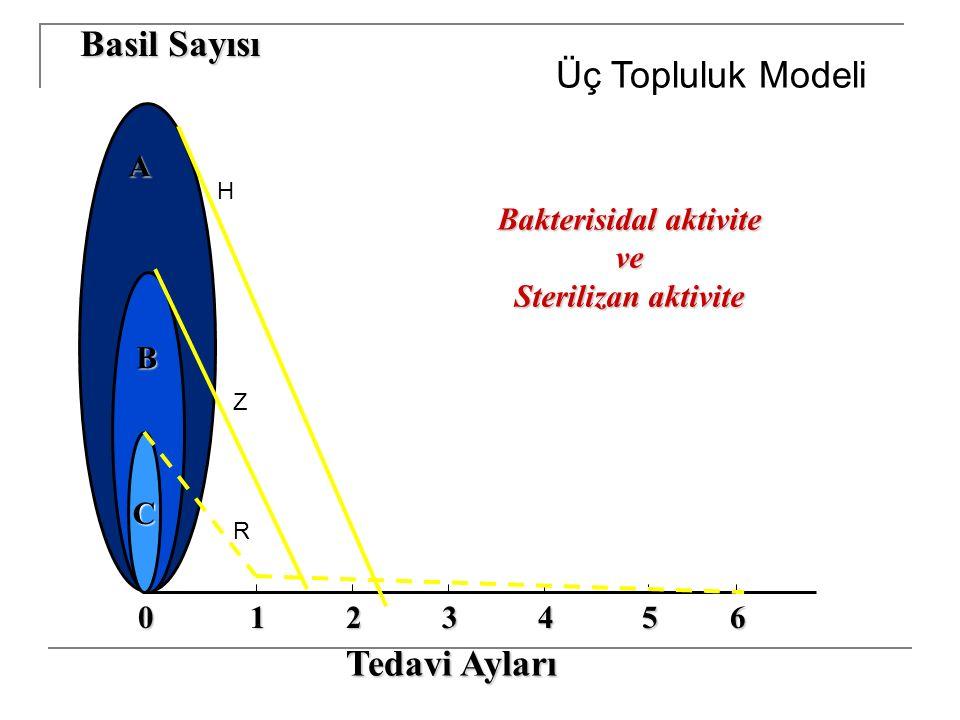 C A B Basil Sayısı 102345 Tedavi Ayları 6 Bakterisidal aktivite ve Sterilizan aktivite Üç Topluluk Modeli H Z R