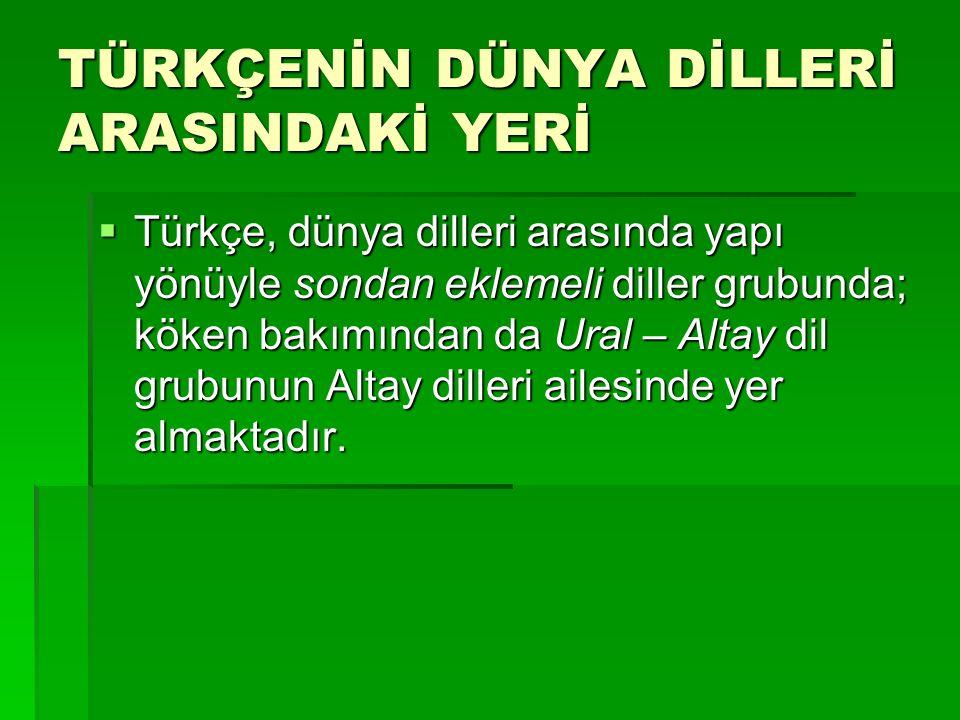  Türkçe, dünya dilleri arasında yapı yönüyle sondan eklemeli diller grubunda; köken bakımından da Ural – Altay dil grubunun Altay dilleri ailesinde y