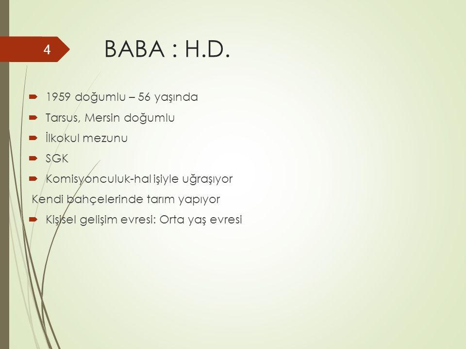 BABA : H.D.  1959 doğumlu – 56 yaşında  Tarsus, Mersin doğumlu  İlkokul mezunu  SGK  Komisyonculuk-hal işiyle uğraşıyor Kendi bahçelerinde tarım