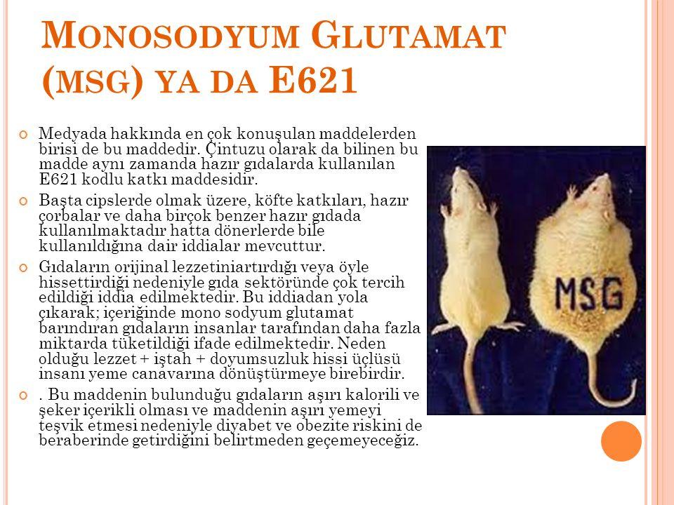 M ONOSODYUM G LUTAMAT ( MSG ) YA DA E621 Medyada hakkında en çok konuşulan maddelerden birisi de bu maddedir. Çintuzu olarak da bilinen bu madde aynı