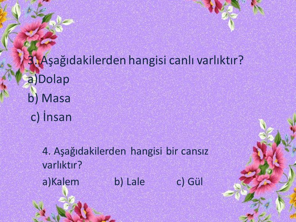 3.Aşağıdakilerden hangisi canlı varlıktır. a)Dolap b) Masa c) İnsan 4.