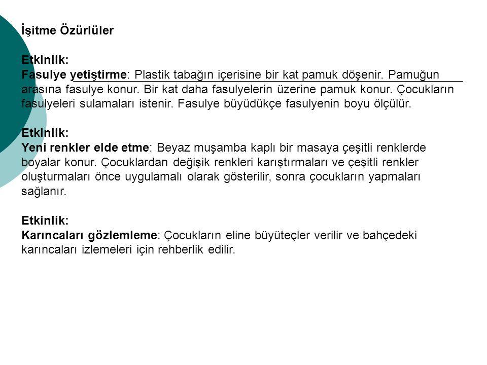 İşitme Özürlüler Etkinlik: Fasulye yetiştirme: Plastik tabağın içerisine bir kat pamuk döşenir.