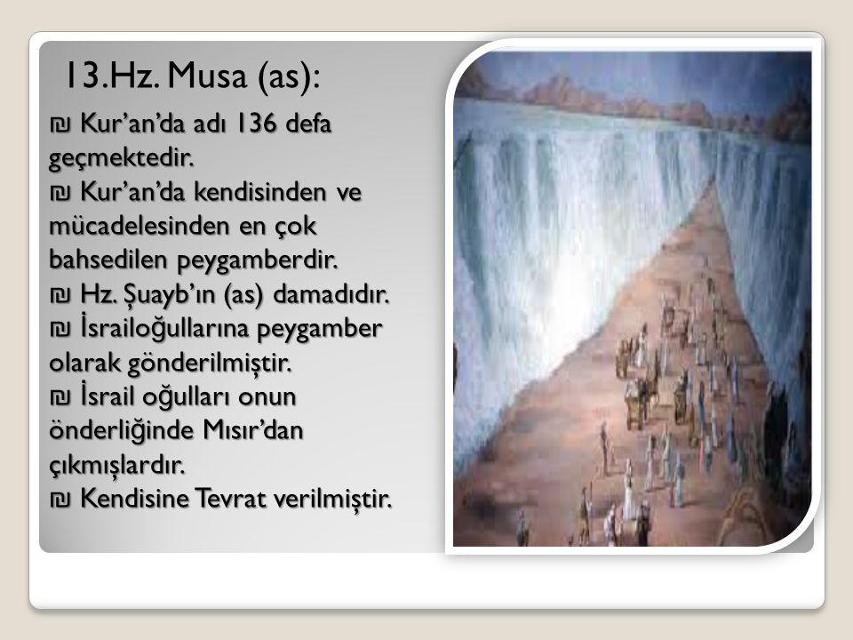 13.Hz. Musa (as): ₪ Kur'an'da adı 136 defa geçmektedir. ₪ Kur'an'da kendisinden ve mücadelesinden en çok bahsedilen peygamberdir. ₪ Hz. Şuayb'ın (as)