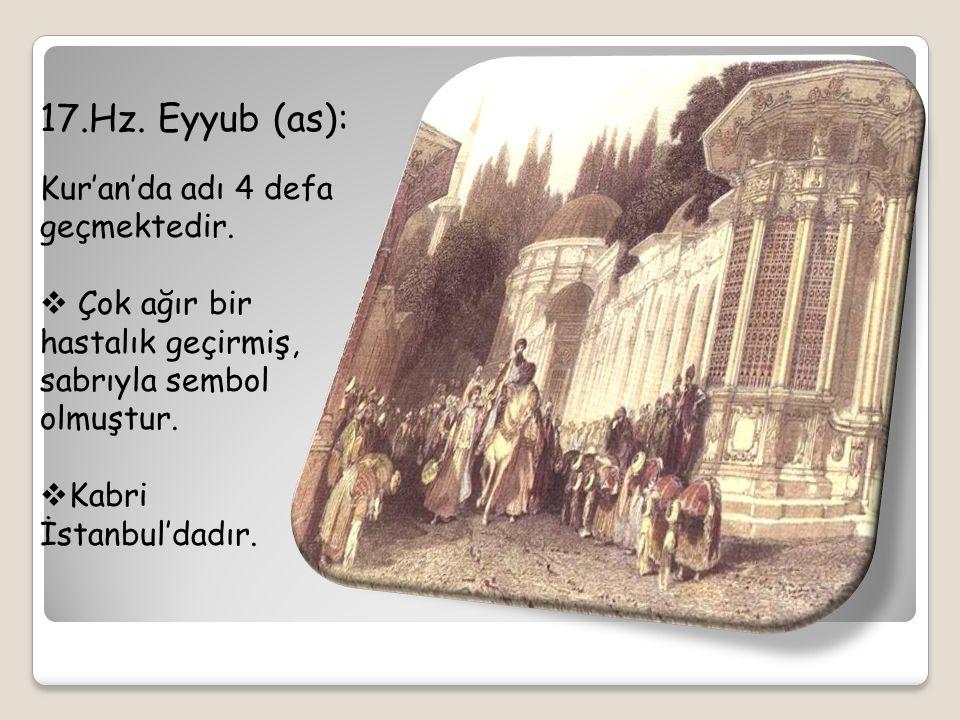 17.Hz. Eyyub (as): Kur'an'da adı 4 defa geçmektedir.  Çok ağır bir hastalık geçirmiş, sabrıyla sembol olmuştur.  Kabri İstanbul'dadır.