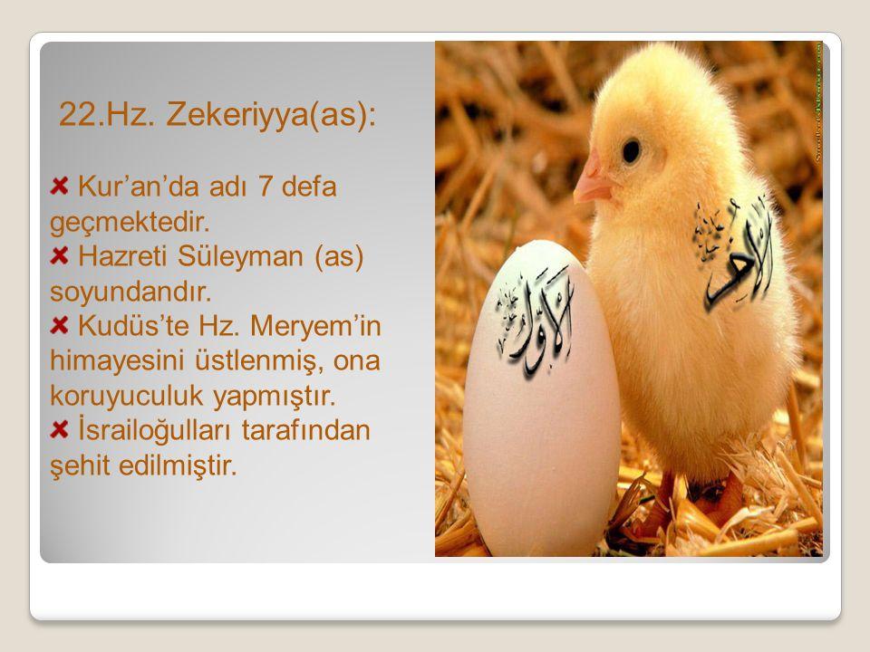 22.Hz. Zekeriyya(as): Kur'an'da adı 7 defa geçmektedir. Hazreti Süleyman (as) soyundandır. Kudüs'te Hz. Meryem'in himayesini üstlenmiş, ona koruyuculu