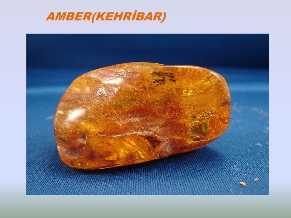 AMBER(KEHRİBAR)