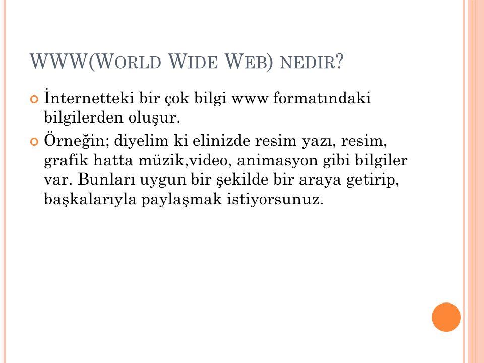WWW(W ORLD W IDE W EB ) NEDIR .