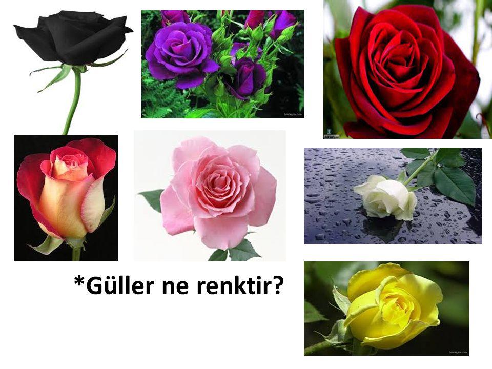 *Güller ne renktir?