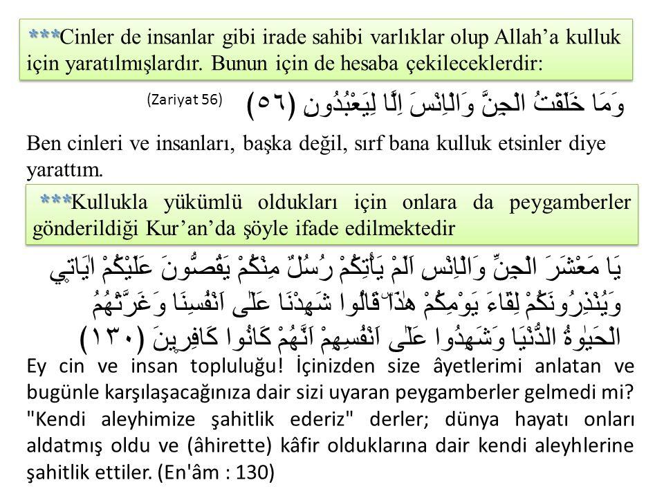 Peygamberimiz İslam'ı cinlere de tebliğ etmiştir.