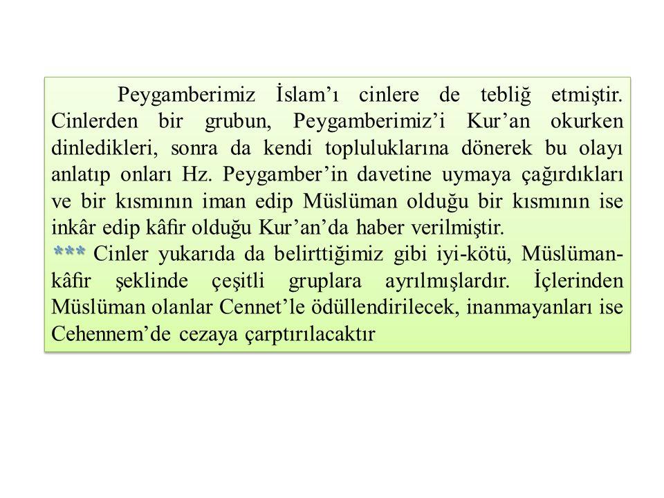 Peygamberimiz İslam'ı cinlere de tebliğ etmiştir. Cinlerden bir grubun, Peygamberimiz'i Kur'an okurken dinledikleri, sonra da kendi topluluklarına dön