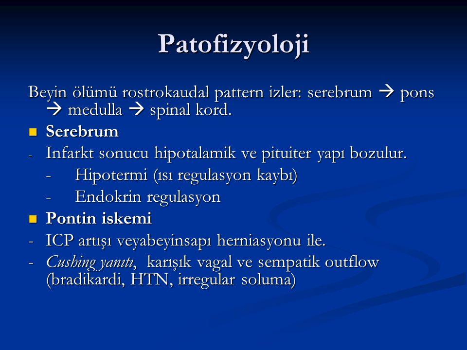 Patofizyoloji Beyin ölümü rostrokaudal pattern izler: serebrum  pons  medulla  spinal kord. Serebrum Serebrum - Infarkt sonucu hipotalamik ve pitui