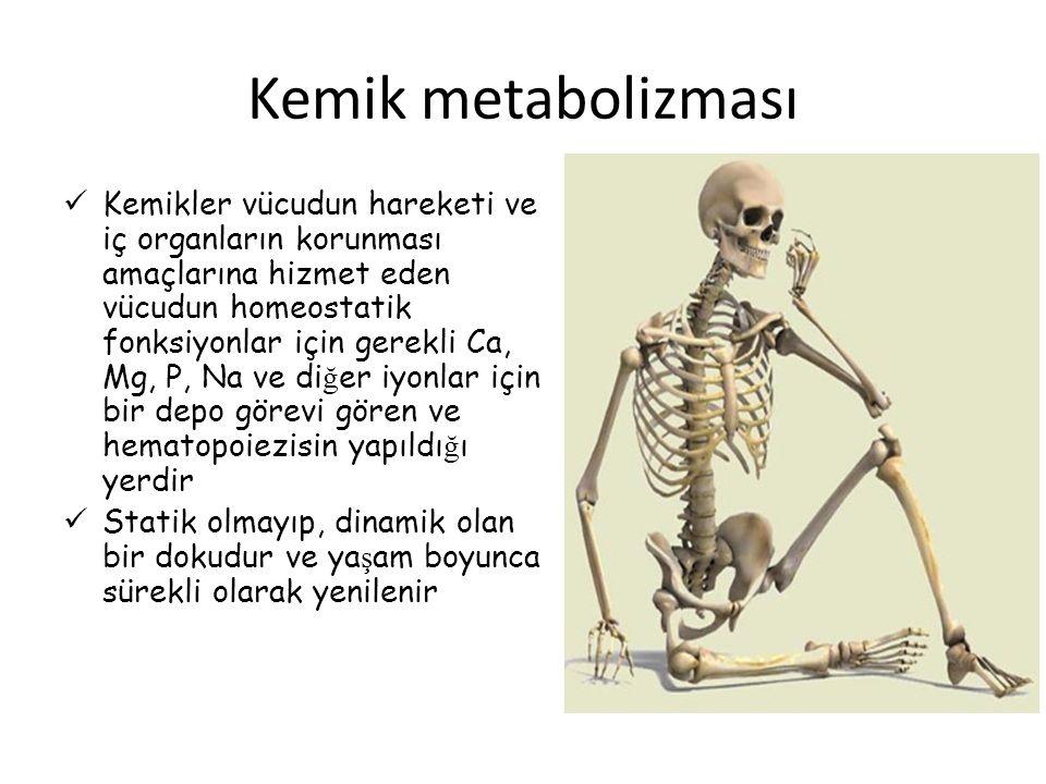 Kemik metabolizması Kemikler vücudun hareketi ve iç organların korunması amaçlarına hizmet eden vücudun homeostatik fonksiyonlar için gerekli Ca, Mg,
