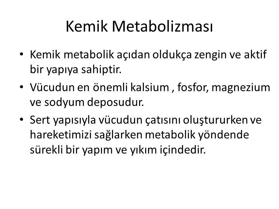 Kemik Metabolizması Kemik metabolik açıdan oldukça zengin ve aktif bir yapıya sahiptir. Vücudun en önemli kalsium, fosfor, magnezium ve sodyum deposud