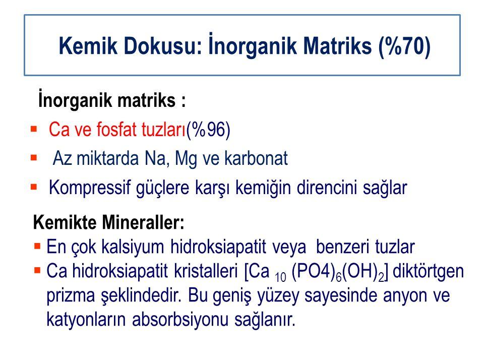 Kemik Dokusu: İnorganik Matriks (%70) İnorganik matriks :  Ca ve fosfat tuzları(%96)  Az miktarda Na, Mg ve karbonat  Kompressif güçlere karşı kemi