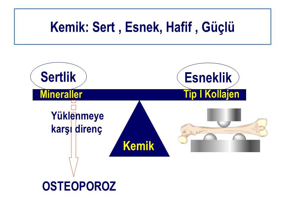 Sertlik Esneklik Kemik Mineraller Tip I Kollajen OSTEOPOROZ Yüklenmeye karşı direnç Kemik: Sert, Esnek, Hafif, Güçlü