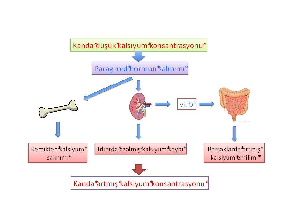 Paget hastalığı  ALP hem tanıda hem takipte kullanılır  Hiperkalsemi ve hiperkalsiüri  Idrarda yıkım ürünleri artar ; Pridinolin,hidroksiprolin, NTX-CTX gibi  RADYOLOJİ; Skleroz,kalınlaşmış trabeküller, kortikal kalınlaşma, kemiksel deformiteler  TEDAVİ: Bifosfanatlar/ Zolendronat