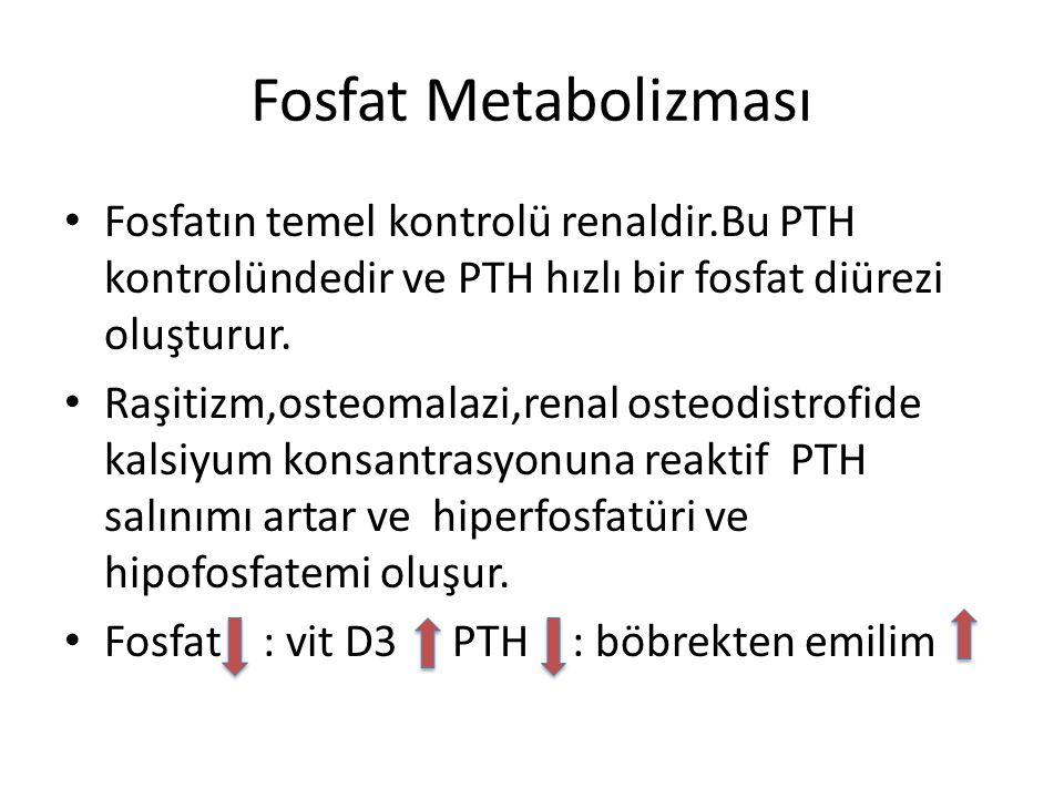 Fosfat Metabolizması Fosfatın temel kontrolü renaldir.Bu PTH kontrolündedir ve PTH hızlı bir fosfat diürezi oluşturur. Raşitizm,osteomalazi,renal oste