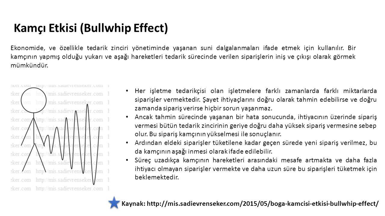 Kamçı Etkisi (Bullwhip Effect) Ekonomide, ve özellikle tedarik zinciri yönetiminde yaşanan suni dalgalanmaları ifade etmek için kullanılır. Bir kamçın