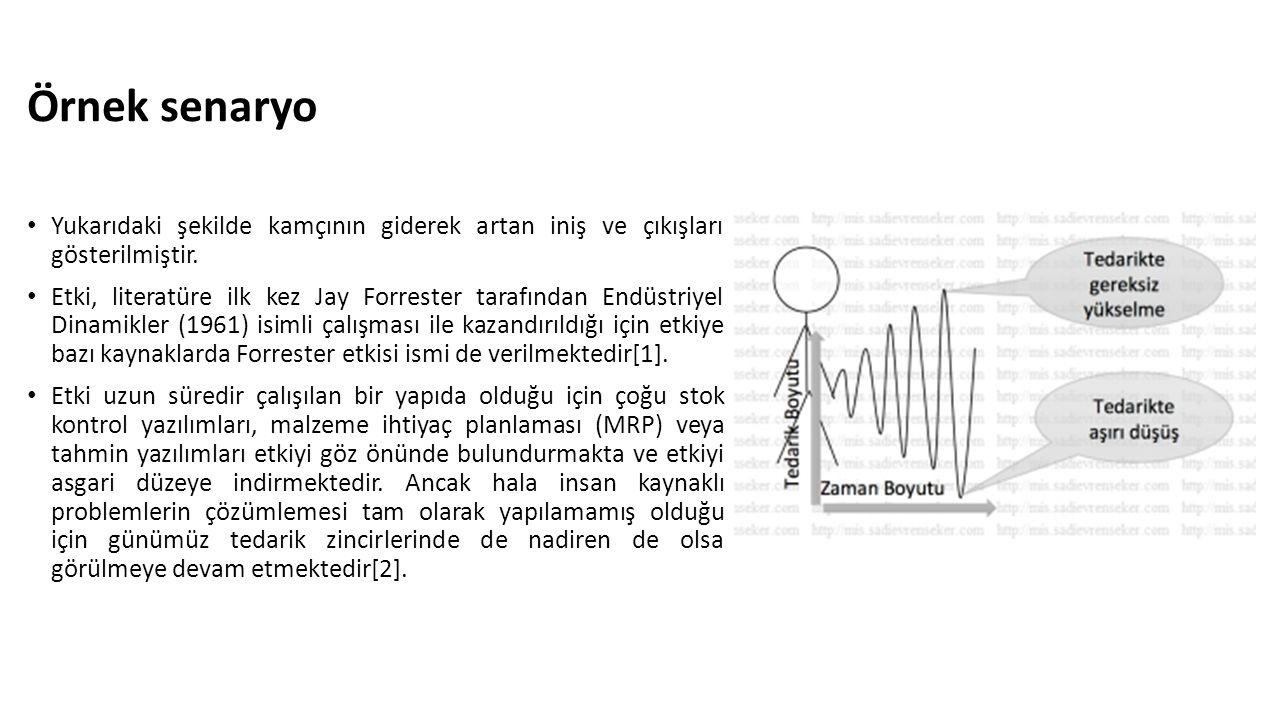Örnek senaryo Yukarıdaki şekilde kamçının giderek artan iniş ve çıkışları gösterilmiştir. Etki, literatüre ilk kez Jay Forrester tarafından Endüstriye