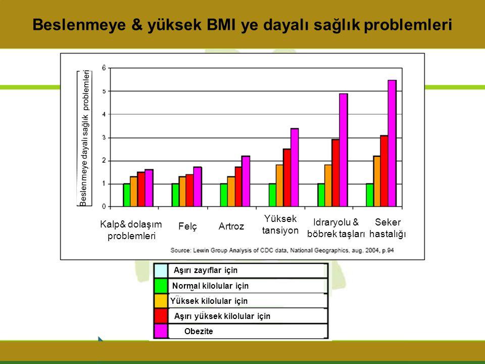 Vücut kitle indeksi BMI '20' olan birisiyle '40' olan birinin vücudu arasındaki fark