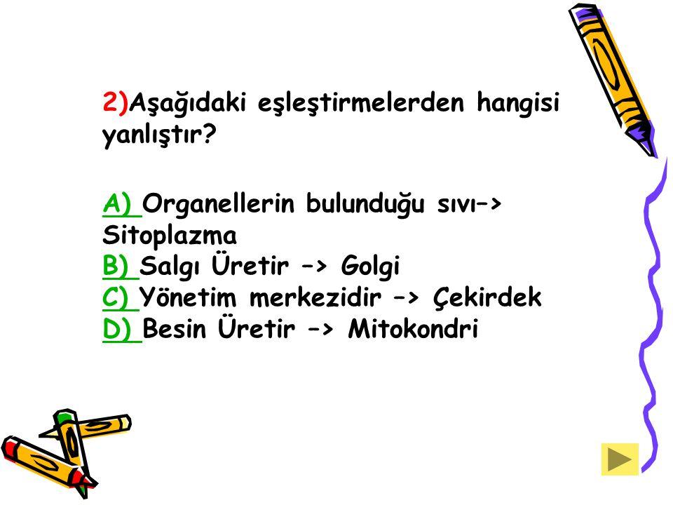 2)Aşağıdaki eşleştirmelerden hangisi yanlıştır? A) A) Organellerin bulunduğu sıvı–> Sitoplazma B) Salgı Üretir –> Golgi C) Yönetim merkezidir –> Çekir