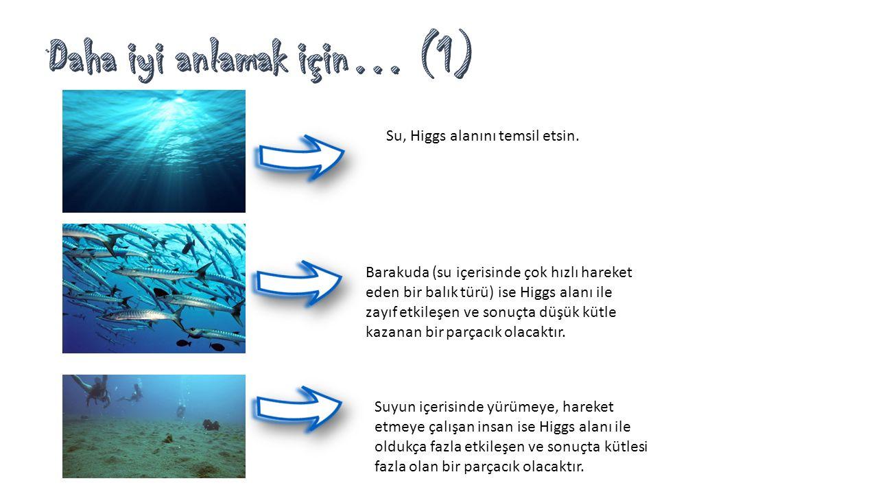 Su, Higgs alanını temsil etsin. Barakuda (su içerisinde çok hızlı hareket eden bir balık türü) ise Higgs alanı ile zayıf etkileşen ve sonuçta düşük kü