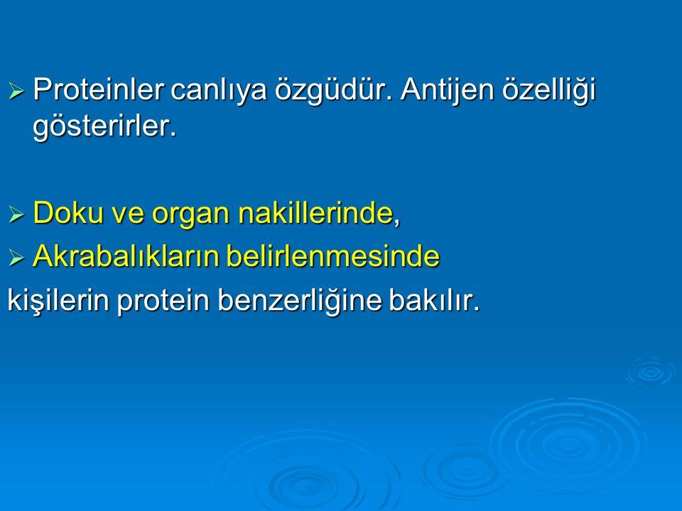  Proteinler canlıya özgüdür. Antijen özelliği gösterirler.  Doku ve organ nakillerinde,  Akrabalıkların belirlenmesinde kişilerin protein benzerliğ
