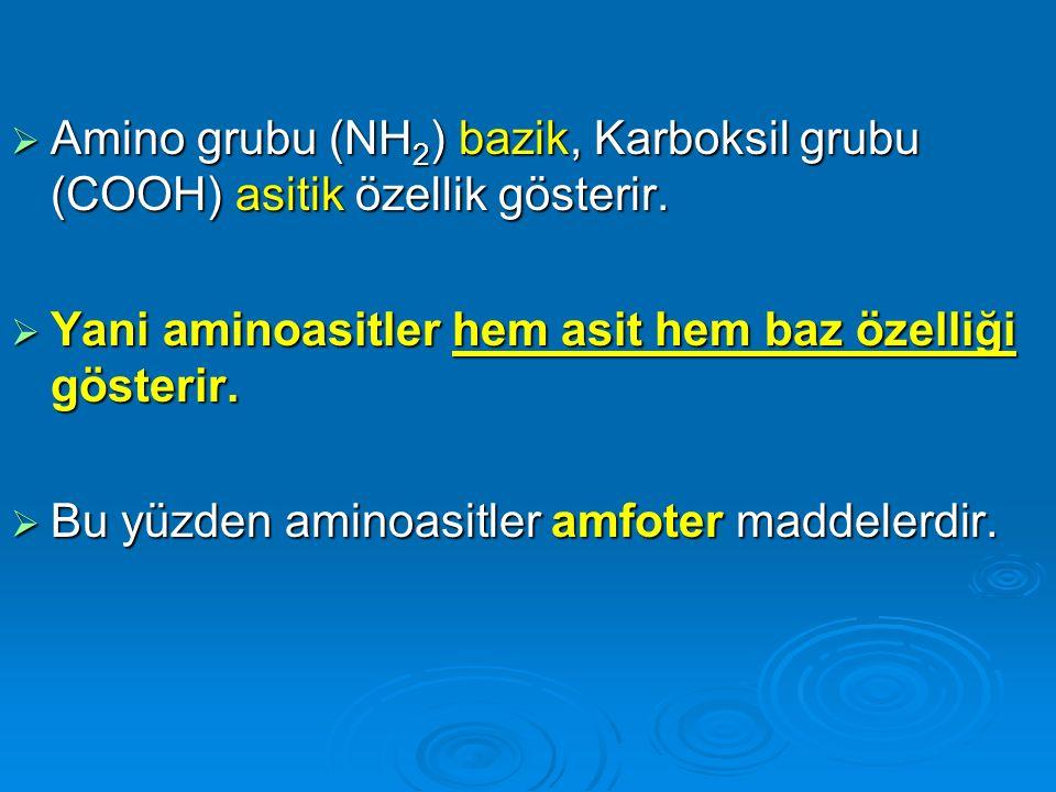  Amino grubu (NH 2 ) bazik, Karboksil grubu (COOH) asitik özellik gösterir.  Yani aminoasitler hem asit hem baz özelliği gösterir.  Bu yüzden amino
