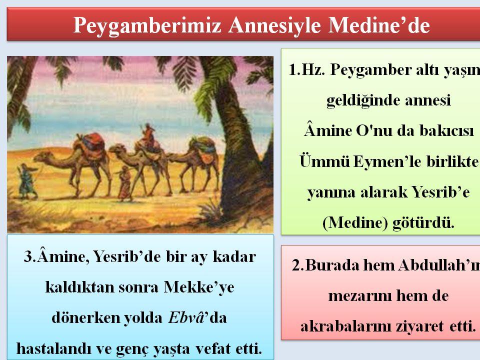 Peygamber Efendimiz 8 yaşında iken dedesi Abdulmuttalib de vefat etti.