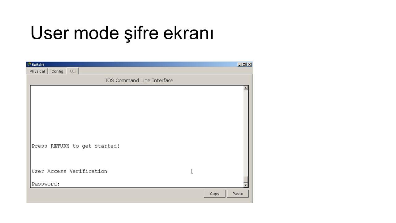 User mode şifre ekranı