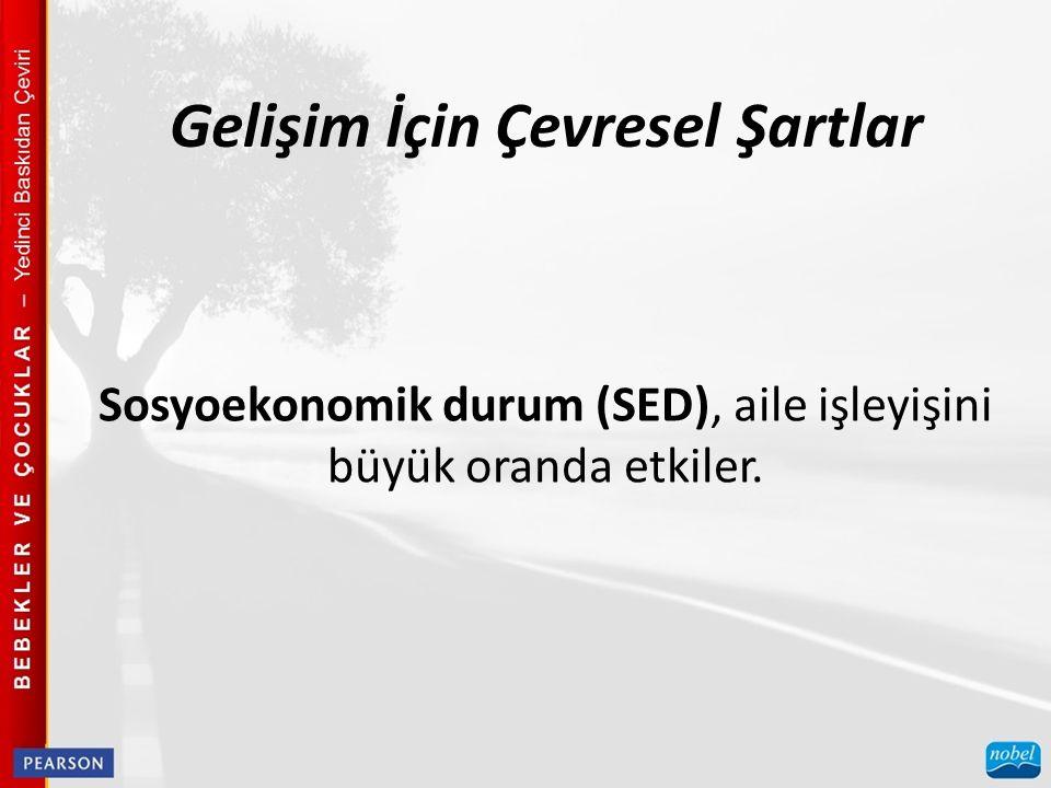 Sosyoekonomik durum (SED), aile işleyişini büyük oranda etkiler. Gelişim İçin Çevresel Şartlar