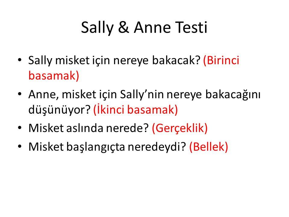 Sally & Anne Testi