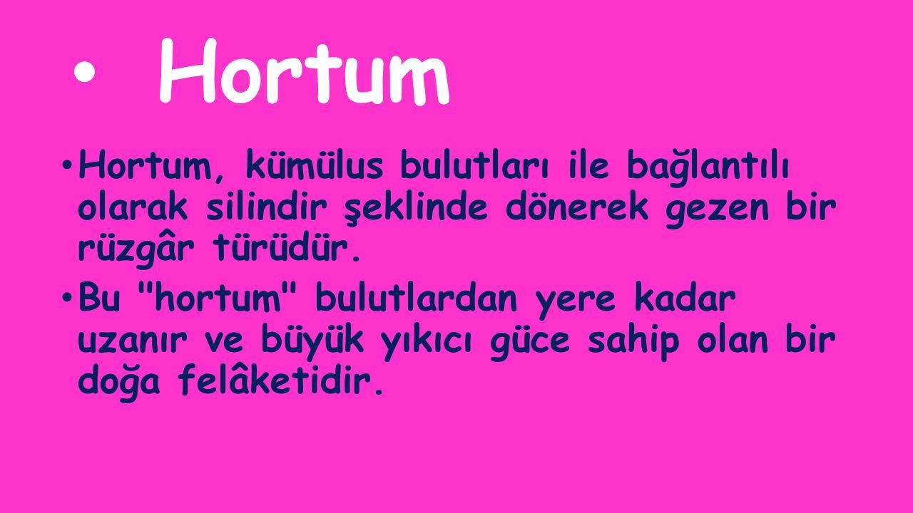 Hortum Hortum, kümülus bulutları ile bağlantılı olarak silindir şeklinde dönerek gezen bir rüzgâr türüdür. Bu